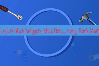Các đoạn code hữu ích loại bỏ Rich Snippets, Meta Data... trong Rank Math
