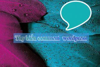 Tùy biến hiển thị comment trong wordpress
