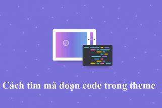 Cách tìm mã đoạn code trong theme wordpress bất kì