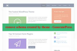 remove schema Generatepress